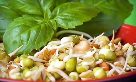 $25 Groupon to Living Foods Cafe - Living Foods Cafe in Virginia Beach