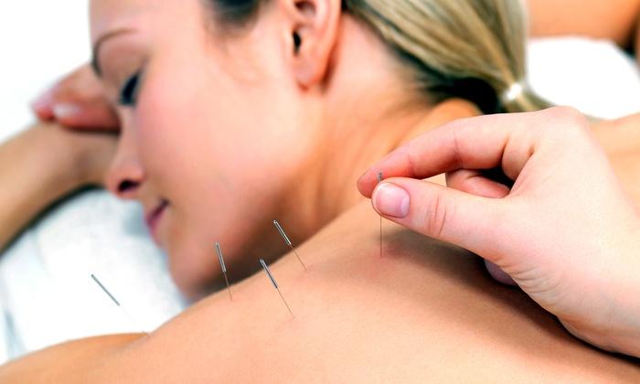 Kristina Katinka - North End: Three Acupuncture Treatments with Consultation from Kristina Katinka (69% Off)