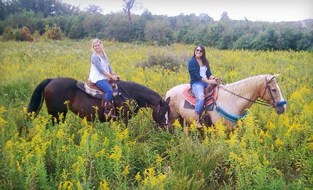 Trail Ride for 1 (a $115 value) - Equestrian Ridge Farm in New Plymouth