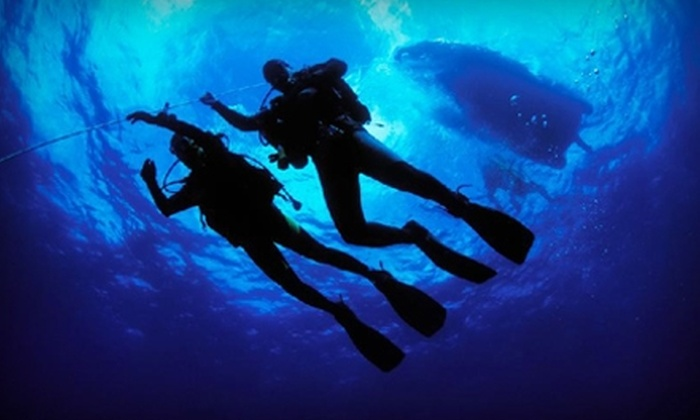 Diving Locker - Vancouver: $50 for a Discover Scuba Diving Course at Diving Locker ($100 Value)