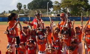 Miami Tigers Baseball Accademy: One Week of Sports Camp at Miami Tigers Baseball Academy (75% Off)