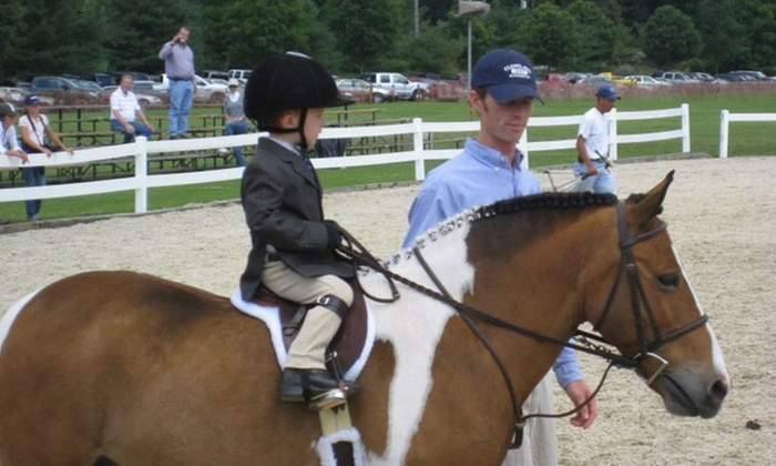 Graystone Hunters And Jumpers - Newbury: Three Horseback-Riding Lessons at Graystone Hunters and Jumpers (65% Off)