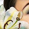 Up to 56% Off Lash Extensions at Chateau Belle