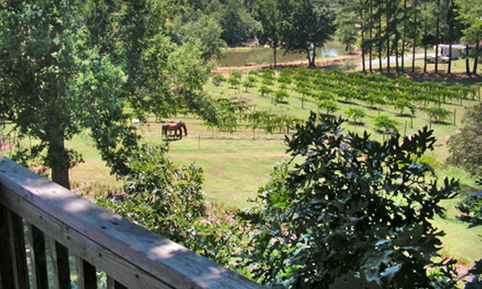 Treehouse Vineyards - Monroe: Winery Tour Package for Two or Six at Treehouse Vineyards in Monroe, North Carolina (Up to 78% Off)
