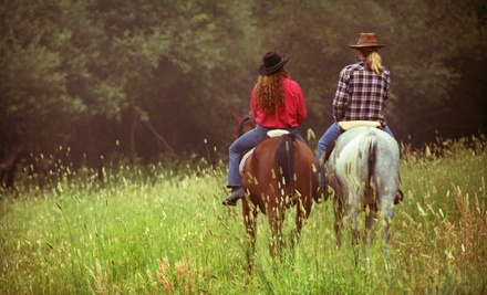 One 2-Hour Standard Package Trail Ride (a $50 value) - Romeros Thunder Inc. in Bernalillo