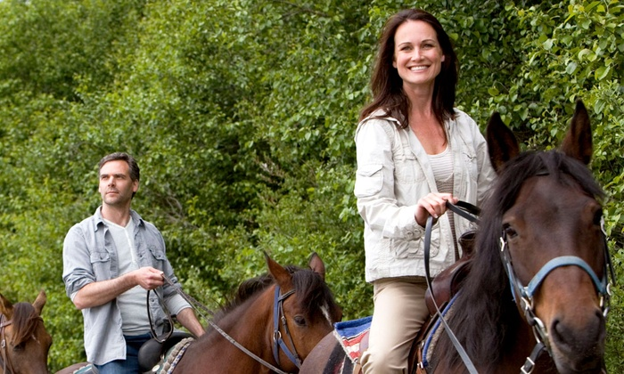 Star HB Farms - Huntsville: 60-Minute Guided Horseback Trail Ride for One, Two, or Four at Star HB Farms (Up to 51% Off)