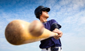 South Bay Sports Training & Batting Cages: Batting Cage Time or Baseball or Softball Lesson at South Bay Sports Training & Batting Cages (Up to 58% Off)