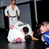 75% Off Martial-Arts and Fitness Training