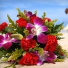 ADreamWeddingHawaii.com - Hawaii Kai: $97 for Hawaiian Wedding or Vow Renewal from ADreamWeddingHawaii.com