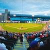 Up to 52% Off Camden Riversharks Baseball