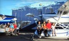 OOb San Diego Seaplanes - Kearny Mesa: 20-Minute Whale-Watching Flight and Beverage for One, Two, or Four from San Diego Seaplanes (Up to 52% Off)