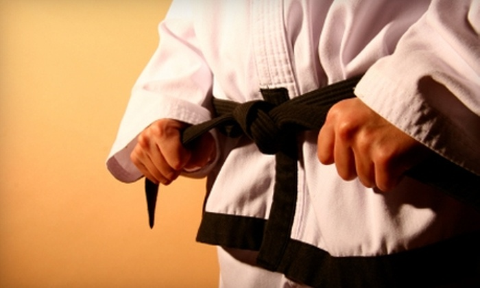 Southwest TaeKwon-Do & Martial Arts Studio - San Angelo: One Month of Martial-Arts Conditioning Classes or Tae Kwon Do or Judo Classes at Southwest TaeKwon-Do & Martial Arts Studio