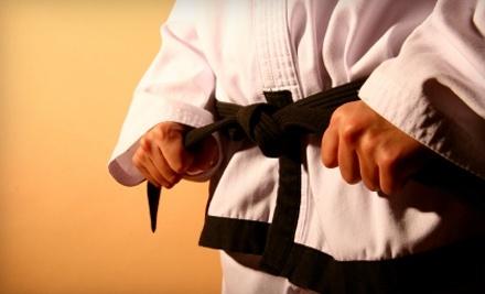 Southwest TaeKwon-Do & Martial Arts Studio: Tae Kwon Do or Judo Class - Southwest TaeKwon-Do & Martial Arts Studio in San Angelo