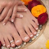 Up to 52% Off Mani-Pedi in Glendale