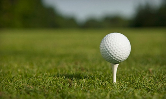 St. Andrews Country Club - St. Andrew's Country Club Estates: Golf Outing for Two or Annual Passes at St. Andrews Country Club (Up to 75% Off). Four Options Available.