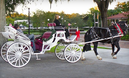 1-Hour Carriage Ride for 2 (a $125 value) - Jewel Court Stables in Winter Garden