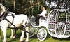 60% Off Carriage Tour for Up to Four