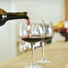 Up to 54% Off Wineries Tour for Two
