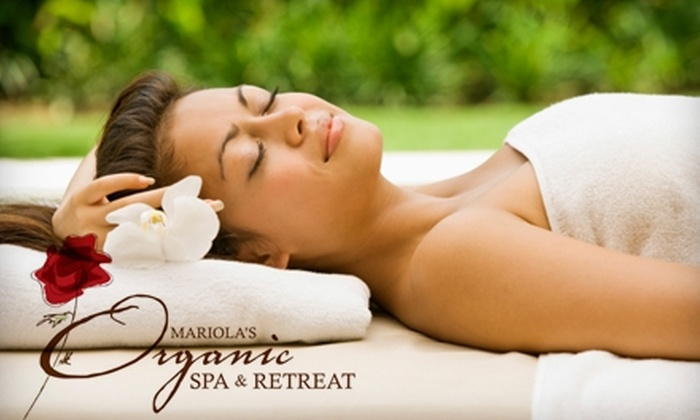 Mariola's Organic Spa - Long Grove: $40 for a One-Hour Organic Facial or One-Hour Organic Massage at Mariola's Organic Spa in Long Grove