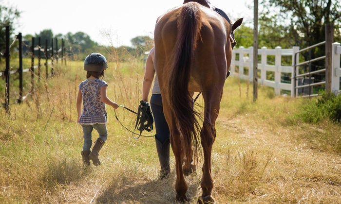 Hide Away Farms - Multiple Locations: 10 Horseback-Riding Lessons at Hide Away Farms (75% Off)
