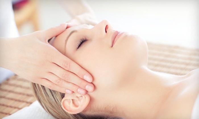 Seasons of Skin Day Spa - Santa Rosa: One or Three 50-Minute Custom Facials with Brow Waxing at Seasons of Skin Day Spa in Santa Rosa (Up to 57% Off)