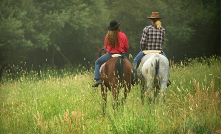 Four 1-Hour Group Horse Riding Lessons (a $130 value) - Yorktown Stables in Seaford