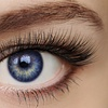 29% Off $125 Worth of Eyelash Extensions