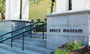 Bruce Museum: One-Year Individual, Family/Dual, or Patron Membership to Bruce Museum (Up to 52% Off)