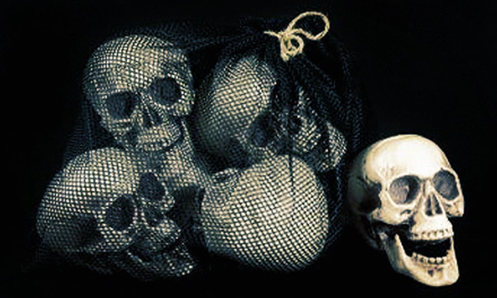 Skeleton Store: Halloween Accessories at the Skeleton Store (Up to 60% Off). Two Options Available.