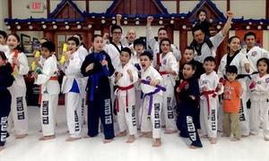 TMA KICKBOXING: Five Martial Arts Classes at North Bergen United Taekwondo (51% Off)