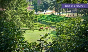 Treehouse Vineyards: Winery Tour with Tastings, Souvenir Glasses, and Bottles for Two or Four at Treehouse Vineyards (Up to 61% Off)