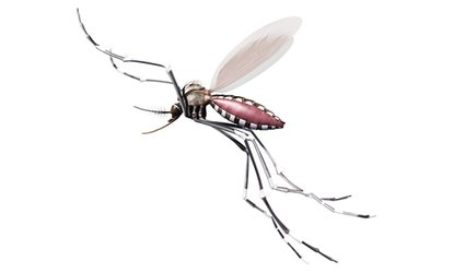 $39 for a Mosquito-Barrier Spray Treatment for Up to a Half-Acre from Green Home Solutions ($129.99 Value)