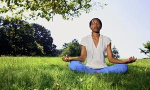 Mesmerize Studio: 10 Group Yoga Classes or 4 Private Yoga Classes at Mesmerize Studio (Up to 79% Off)