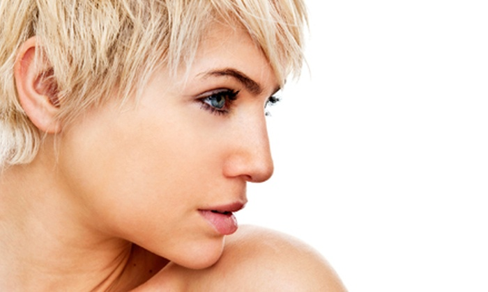 Tres Chic Salon - Gardner: Haircut and Conditioning Treatment with Optional Partial Highlights and Eyebrow Wax at Tres Chic Salon (Half Off)