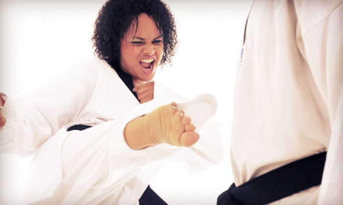 Epic Freestyle Karate Centers - Plymouth - Wayzata: Private Self-Defense or Martial-Arts Classes, or a Kids' Birthday Party at Epic Freestyle Karate Centers (Up to 67% Off)