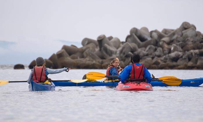 Kayak Connection - Santa Cruz: Single or Double Kayak or Standup-Paddleboard Rental at Kayak Connection (Up to 37% Off)