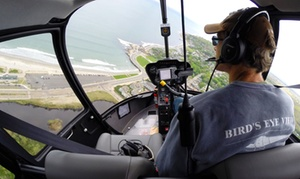 Bird's Eye View Helicopters: Mansion Helicopter Tour from Bird's Eye View Helicopters (Up to 40% Off)