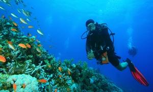 ASD UNIVERSO BLU: Corso di scuba diver con uscite in mare oppure conseguimento del brevetto (sconto fino a 93§%)