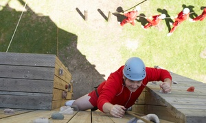 2.5-hour Ropes-course Adventure For One Or Two At Ironwood Outdoor Center (50% Off)