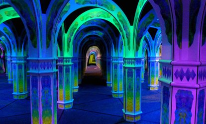 image for Two, Four, Six, or Fifteen Tickets to Magowan's Infinite Mirror Maze (Up to 51% Off)
