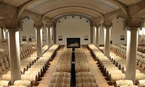 DONNAFUGATA: Visita guidata e degustazione alle cantine storiche di Marsala per 2 o 4 persone da Donnafugata