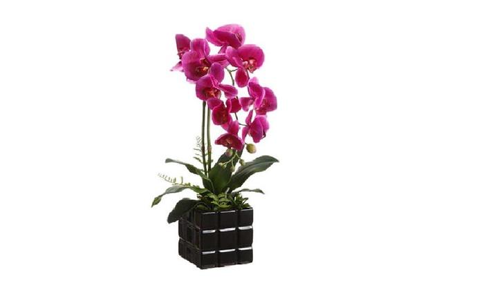 Rare Elegance - Miami: Up to 57% Off Custom Flower Arrangements at Rare Elegance