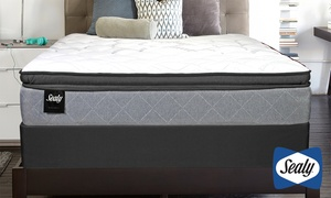 "Closeout: Sealy Accomplished 14"" Plush Euro Pillowtop Mattress Set"