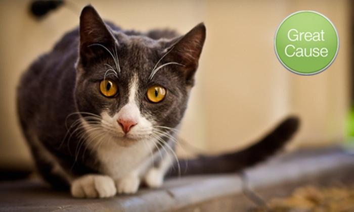 Iowa Humane Alliance - Cedar Rapids: $10 Donation to Help Spay or Neuter Cats