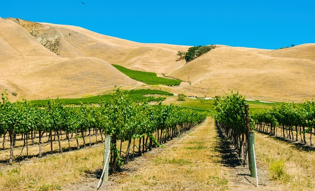 Livermore Hotel - Livermore, CA: Stay at Hotel in Livermore, CA with Dates into October