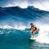 Up to 52% Off Lessons for 2 or 3 at School of Surf