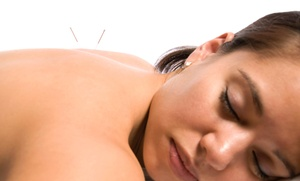 Saint Lucie Acupuncture: Three Acupuncture Treatments and an Initial Consultation at Saint Lucie Acupuncture (50% Off)