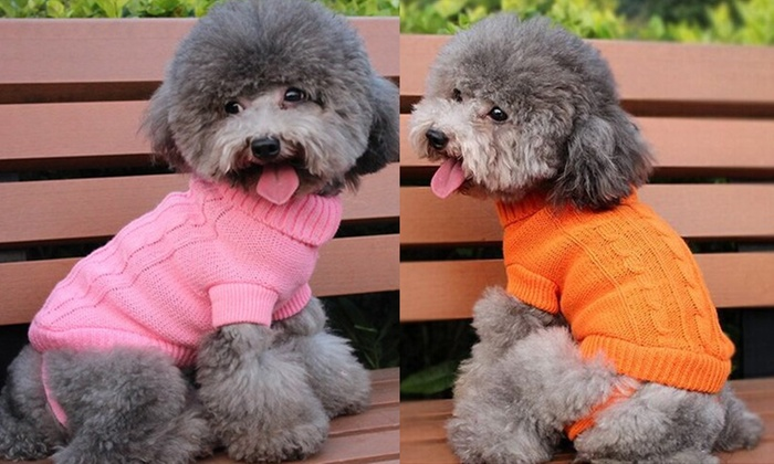 New Zealand Trading Solutions: $12 Knitted Dog Jumper in a Choice of Colours