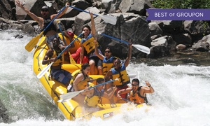 Action Whitewater Adventures: Half- or Full-Day Rafting Trip with Hot Barbecue Lunch from Action Whitewater Adventures (Up to 47% Off)