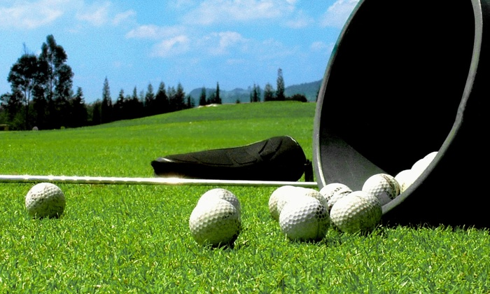 Bumble Bee Hollow Golf Center - Colonial Crest: Three or Six Buckets of Range Balls or Two Private Golf Lessons at Bumble Bee Hollow Golf Center (Up to 56% Off)